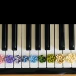 アンティム音楽教室